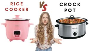rice cooker vs crock pot